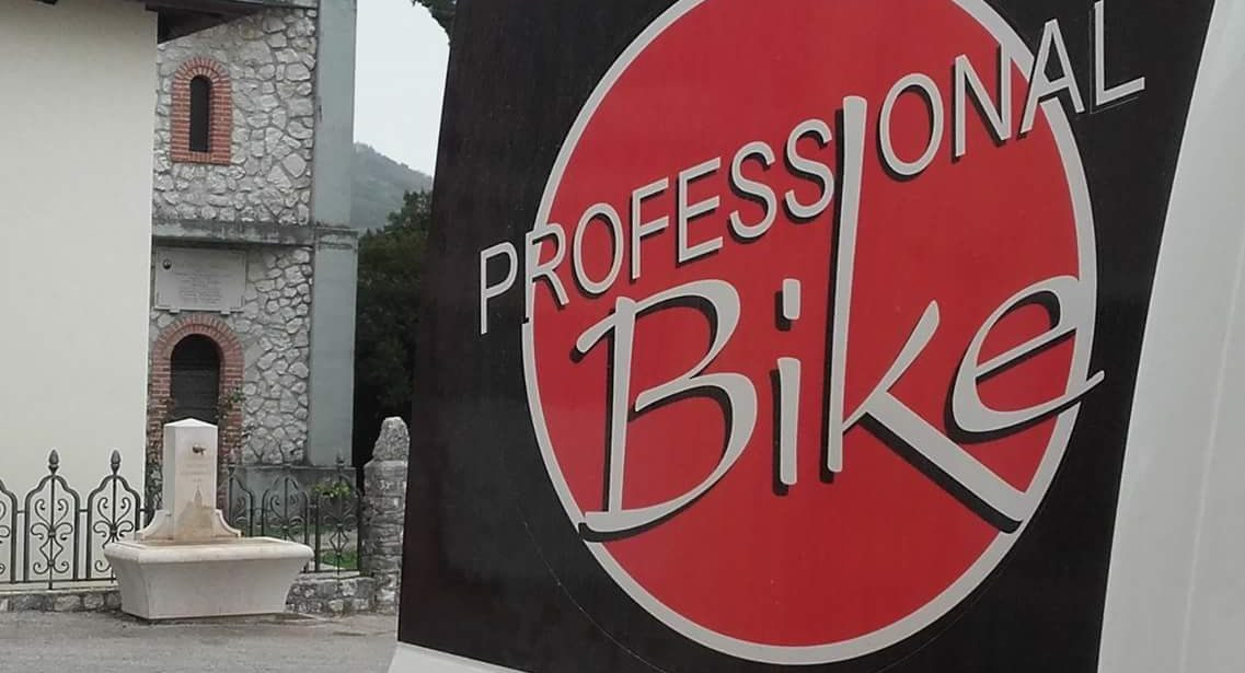 PROFESSIONAL BIKE
